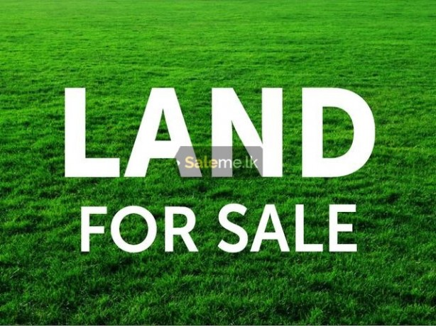Land For Sale - Kandy